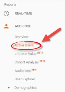 Google Analytics Audience | Local First SEO | Carrollton TX