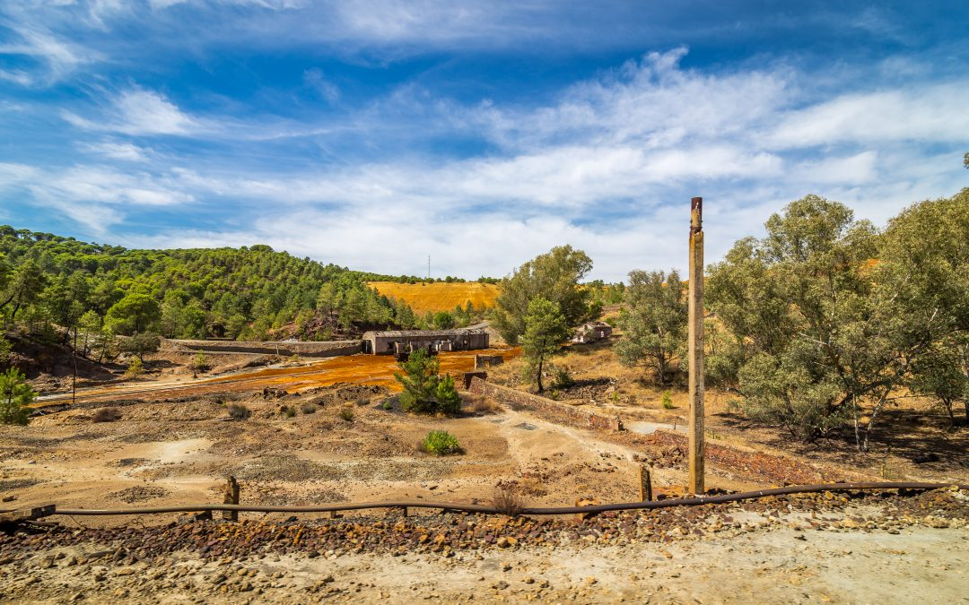 Best Site preparation and Land clearing company is……
